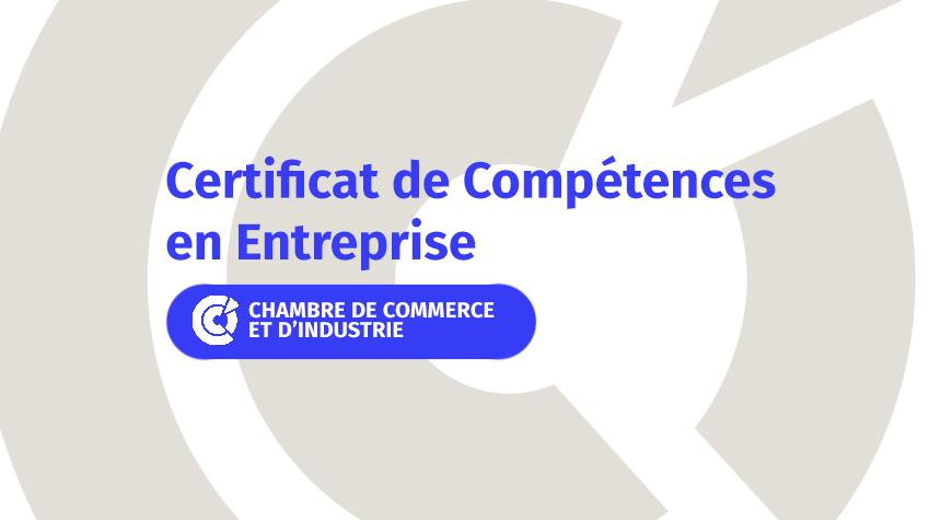 Tout savoir sur les Certificats de Compétences en Entreprise (CCE)