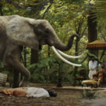 L'agence Orphéa a organisé la présence de l'éléphant pour le tournage du clip « Immortel » du rappeur Gims, sorti le 25 septembre dernier.